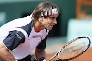 Spain's David Ferrer during the French Open men's singles fourth round match against Russia's Mikhail Youzhny on June 2. Ferrer is one of the finest claycourters of the last few years, but he has yet to make it past the last eight at Roland Garros
