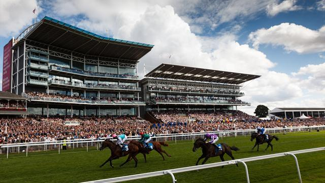 Horse Racing - Tributes paid to fan killed in horror fall at York