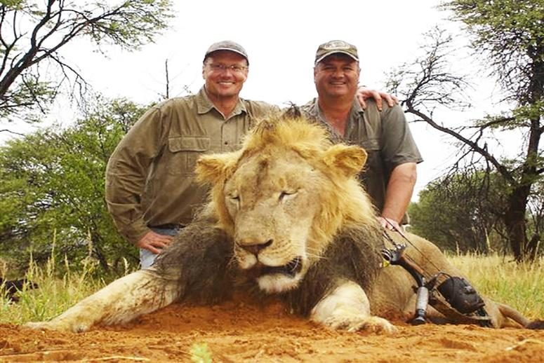 An American Dentist Killed Zimbabwe's Famous Lion