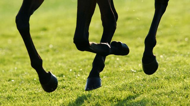 Horse Racing - Racing results: Thursday 28 June