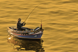 Fishing for Leads: PPC vs. SEO Keyword Selection image fishing small  2848968140