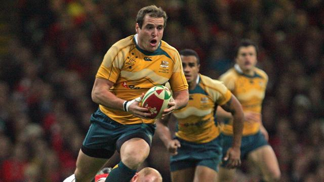 Championship - Wallabies going straight in Wellington, says Alexander
