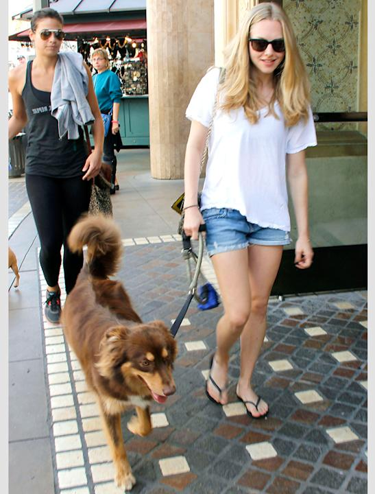 Celebrity pets: Amanda Seyfried is regularly spotted with Finn her German Shepherd, either going for runs or hitting the LA streets.