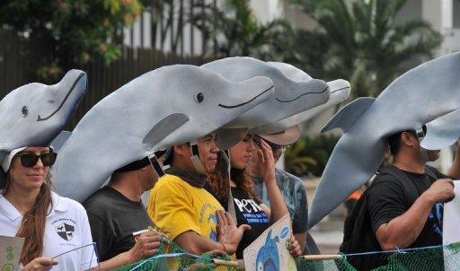 Environmental activists wearing dolphin hats demonstrate in Manila. A court has blocked the export of 25 captive dolphins trained in the Philippines to become show animals at a Singapore casino, a Filipino official and animal rights groups said Saturday