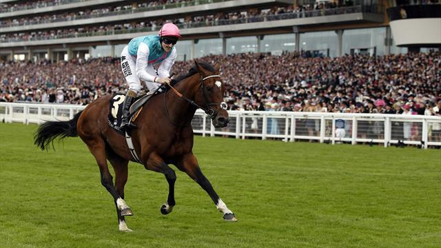 Equestrian - Frankel sires first foal from former Cecil stablemate