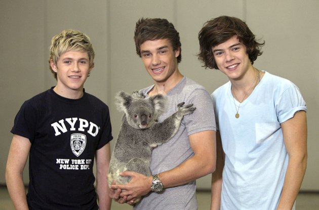 One Direction's Niall Horan, Harry Styles and Liam Payne