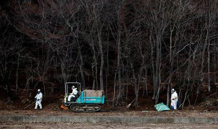 Decontamination workers wearing protective suits and masks, remove radiated soil and leaves from a forest in Tomioka town, Fukushima prefecture, near Tokyo Electric Power Co's (TEPCO) tsunami-crippled Fukushima Daiichi nuclear power plant February 24, 2015. . REUTERS/Toru Hanai