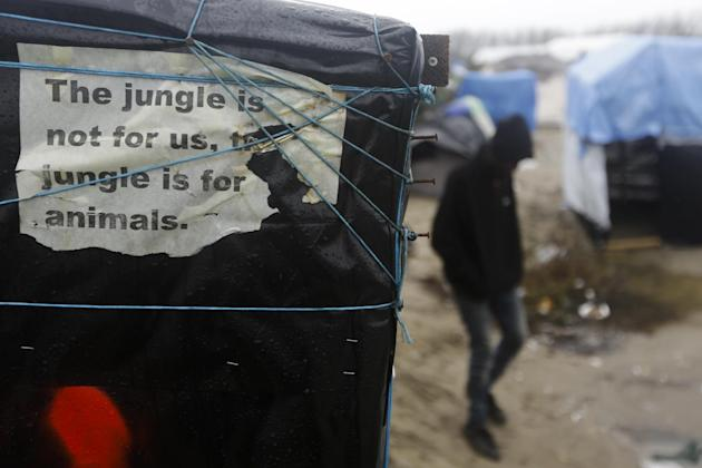 FILE - In this Friday, Nov. 6, 2015 file photo, a man walks beside a decomposing poster reading 'The jungle is not for us, the jungle is for animals' fixed by a Sudanese refugee at a tent, ins