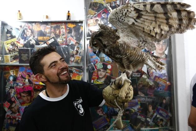 Fan of the Harry Potter franchise, Menahem Asher Silva Vargas, smiles while holding an owl during an exhibition of the Guinness World Record collection of Harry Potter memorabilia at the Mexican Museu