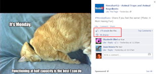 11 Ways To Humanize Facebook Brand Pages image funny havhart facebook post