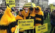 Beekeepers March: Action Urged Over Pesticides
