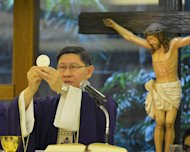 The Archbishop of Manila, Cardinal Luis Antonio Tagle, celebrates mass at a church in Manila, on February 13, 2013. Bishops and all Catholics in the Philippines are hoping that Tagle will be the next pope, a senior church figure said on February 12, as he promoted the credentials of the country's only candidate