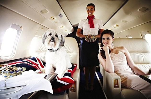 Private Jets Inside The Planes Of The Rich And Famous