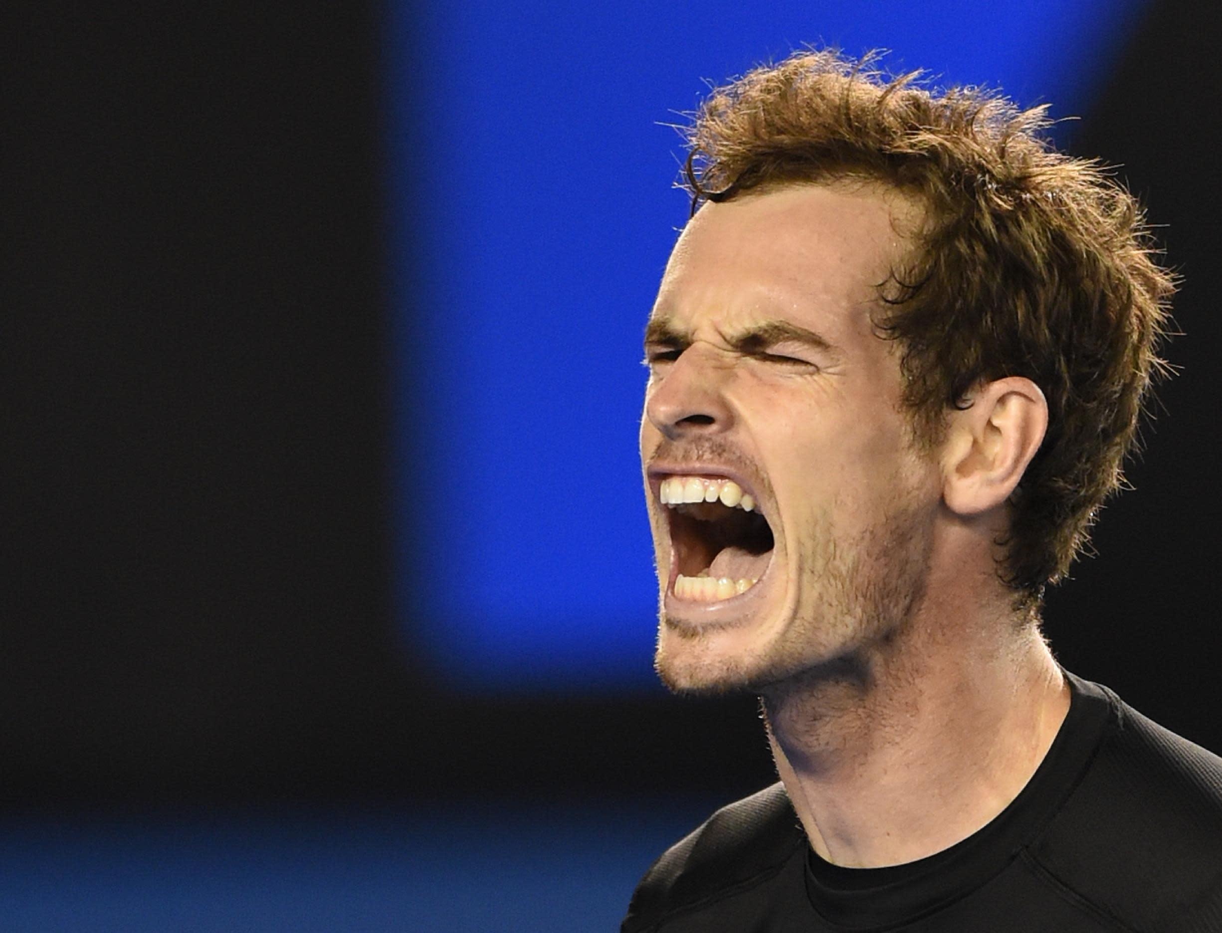Australian Open men's final: LIVE REPORT