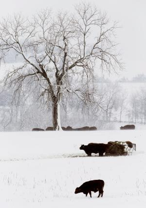 Experts: Twin storms won't end drought in Plains