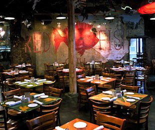 Best seafood restaurants in the u s yahoo news for Red fish grill new orleans la