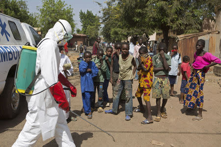 Mali ends last quarantines, could be Ebola-free next month