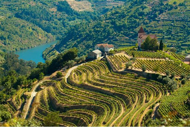 Douro Portugal wine region