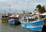 Fishing boats in the harbour at Negombo. A thin layer of oil has been seen off the popular coastal resort, navy sources say