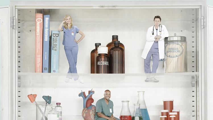"The cast of ""Scrubs."""