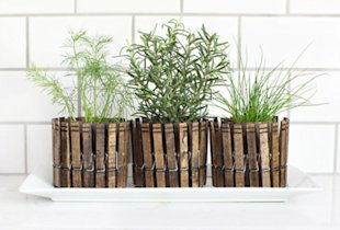 Clothespin Herb Planters