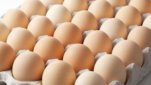 Five Reasons to Buy Eggs at Farmers' Market