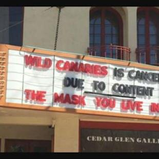 Lesbian Themed IFC Film 'Wild Canaries' Banned by Idaho Theater