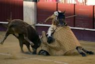 A picador prepares to receive a bull during a bullfight at the Malagueta Bullring in Malaga, Spain, in August 2012. Bullfights returned to Spanish public television on Wednesday after a six-year suspension, sparking warnings of legal action from animal rights activists
