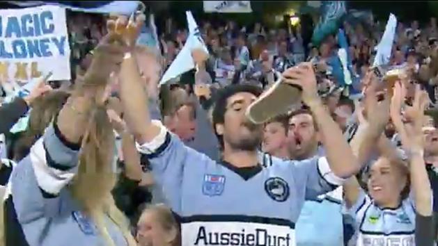 sharks fan celebration