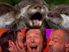 Benedict Cumberbatch Imitates Otters, Gets Kissed by Johnny Depp (Video)
