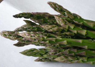 Asparagus–The Unlikely Birth Control?