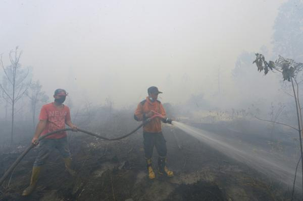 Forest Fire Emergency, Riau Requested Helicopter Water Bomb