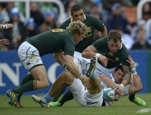 Springboks to visit France after four-year gap