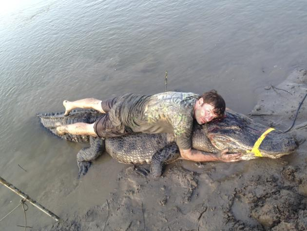 Dustin Bockman lies on top of his record setting alligator, weighing 727 pounds and measuring 13 feet, captured in Vicksburg, Mississippi