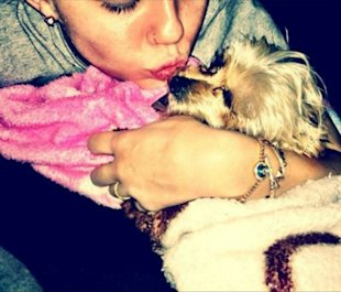 Miley Cyrus' Heartbreak: Puppy Lila Was Killed By Bulldog Ziggy