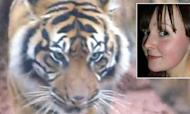 Female Zoo Worker Killed In Tiger Attack