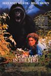 Poster of Gorillas in the Mist