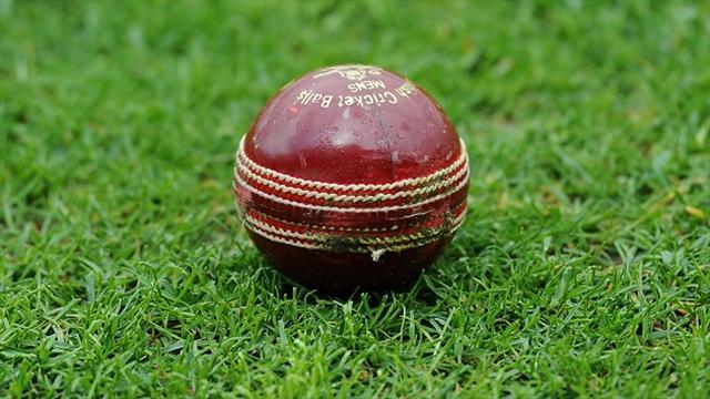 Cricket - Steindl not concerned about past