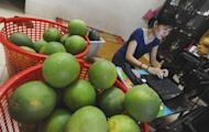 Thao Phuong, an IT engineer with Hanoi Posts Company, works on her laptop as a part-time e-trader selling fruit in Hanoi. Vietnam's young, tech-savvy population is turning to the Internet to break out of an economic system stifled by decades of communist rule, leading to a boom in e-commerce