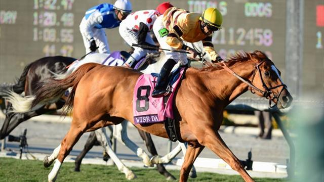 Horse Racing - Wise Dan wins the Breeders' Cup Mile