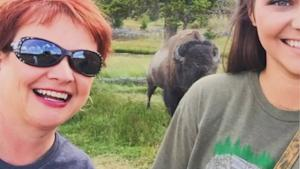 Bison Selfie Turned Into Mississippi Woman's 'Most…