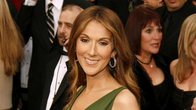 Celine Dion at The 79th Annual Academy Awards.