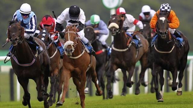 Horse Racing - Splash of Ginge wins big at Newbury