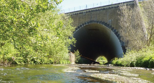 Ever tried trout fishing at manchester airport yahoo for Best trout fishing in ct