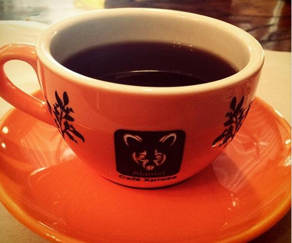 8. Kopi luwak or civet coffee