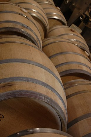 Barrels with next this seasons wine to be ready for next year.