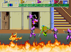 Teenage Mutant Ninja Turtles Video Game