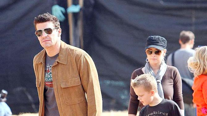 Boreanaz David Pumpkin Patch