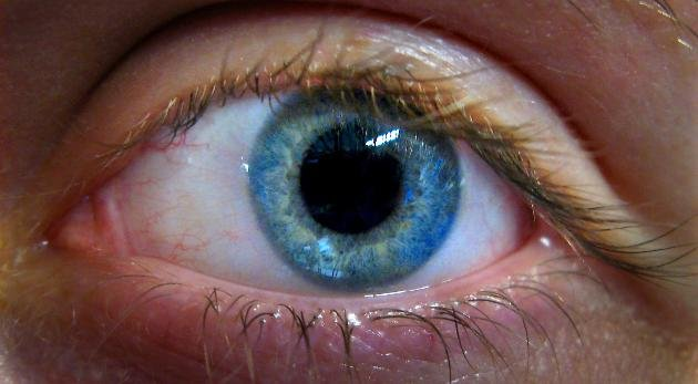 Research showed that stem cells can be gathered from the corneal limbus