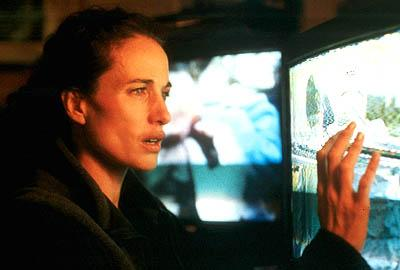 Andie MacDowell as Sarah in Universal Focus' Harrison's Flowers